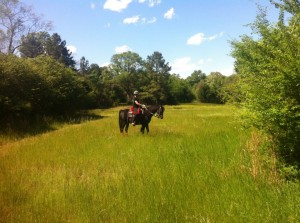 On the Trails at One Oak