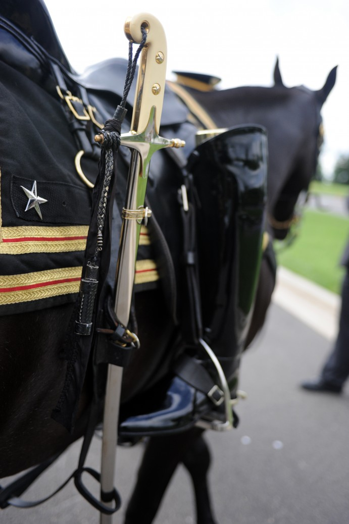 Sergeant York, a riderless capparisoned horse, moves into position for the start of Brig. Gen. Bain MicClintock's funeral ceremony at Arlington National Ceremony May 18, 2011.
